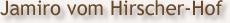 Jamiro vom Hirscher-Hof