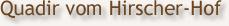 Quadir vom Hirscher-Hof